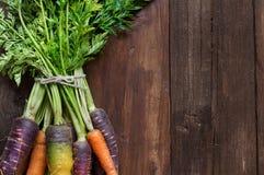 Fresh organic rainbow carrots Stock Images