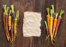 Fresh organic rainbow carrots and paper Stock Images