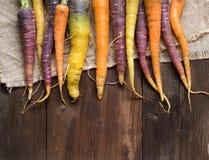 Fresh organic rainbow carrots Stock Photography