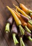 Fresh organic rainbow carrots Royalty Free Stock Photos
