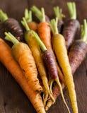 Fresh organic rainbow carrots Stock Photos