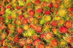 Fresh organic rambutans on shelf store. Tropical fruit. Sweet ta. Ste. Favorite fruit in Summer Royalty Free Stock Images