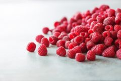 Fresh organic raspberries. Fruit background with copy space. Summer and berries harvest concept. Vegan, vegetarian, raw. Food Royalty Free Stock Photo