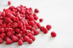 Fresh organic raspberries. Fruit background with copy space. Summer and berries harvest concept. Vegan, vegetarian, raw. Food Royalty Free Stock Images