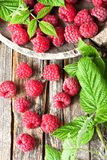 Fresh organic raspberries with leaves, selective focus. Fruit ba. Resh raspberries with leaves on rustic wooden background, top view. Healthy eating antioxidant Royalty Free Stock Photography