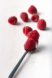 Fresh, organic raspberries in metal spoon, over a wooden backgro. Fresh, organic raspberries in a metal spoon on white, wooden background. selective focus, close Stock Images