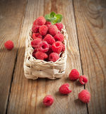 Fresh organic raspberry in basket. Selective focus Royalty Free Stock Photo