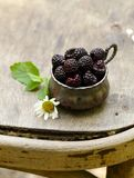 Fresh organic raspberry Stock Photography