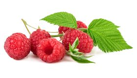 Fresh Organic Raspberry With Green Leaf on White. Fresh Organic Raspberry With Green Leaf Isolated on White Background Stock Photo