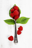 Fresh organic raspberry in a spoon.  Selective focus Stock Photo