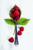 Fresh organic raspberry in a spoon.  Selective focus Stock Image
