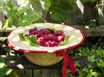 Fresh organic raspberry in straw hat. Fresh organic raspberry with leaves in straw hat Royalty Free Stock Photo