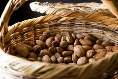 Fresh Organic Raw Almonds with Shell in Basket. Organic Food Stock Photography
