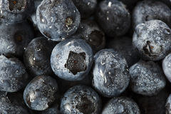 Fresh Organic Raw Blueberries. In a Basket Stock Images
