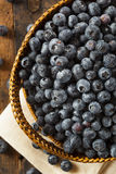 Fresh Organic Raw Blueberries. In a Basket Royalty Free Stock Image