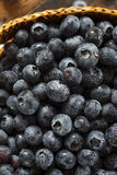 Fresh Organic Raw Blueberries Royalty Free Stock Photography