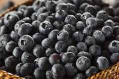 Fresh Organic Raw Blueberries. In a Basket Stock Photo