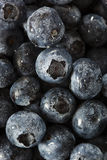 Fresh Organic Raw Blueberries Stock Images