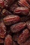 Fresh Organic Raw Brown Date Fruit Stock Image
