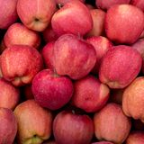 Fresh organic red apples on the farmers market. Close-up apple background. Healthy vegan food