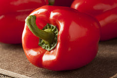 Fresh Organic Red Bell Pepper Stock Photography