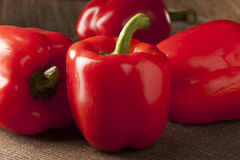 Fresh Organic Red Bell Pepper Royalty Free Stock Photography
