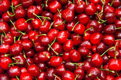 Fresh Organic Red Cherries Royalty Free Stock Photography