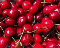 Fresh organic red cherries with stems Stock Photos