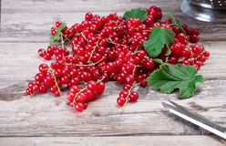 Fresh organic red currants. Fresh ripe red currants on a wooden table Stock Photography