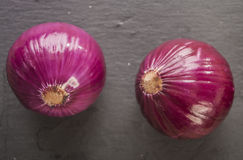 Fresh Organic Red Onion Stock Photography