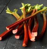 Fresh organic rhubarb Royalty Free Stock Photos