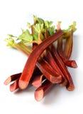 Fresh organic rhubarb Royalty Free Stock Image