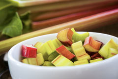 Fresh organic rhubarb Stock Images