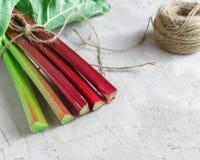 Fresh organic rhubarb on grey concrete background Stock Images