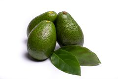 Fresh organic ripe green Fuerte avocado with leaves, copy space. Close up  on white background Royalty Free Stock Photo