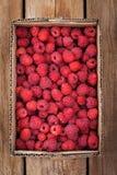 Fresh organic ripe raspberry in box Royalty Free Stock Photos