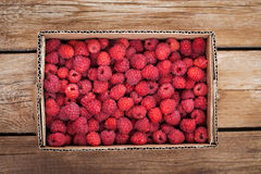 Fresh organic ripe raspberry in box Stock Images