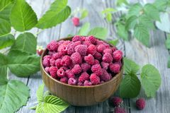 Fresh organic ripe raspberry with leaf in bowl on wooden table. Selective focus Stock Image