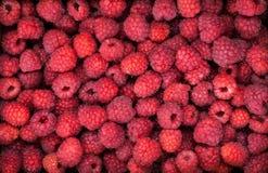 Fresh organic ripe raspberry, top view Royalty Free Stock Photo