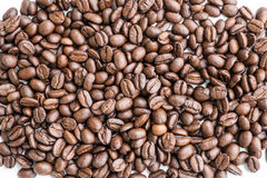 Fresh organic roasted coffee beans Stock Images