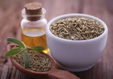 Fresh organic rosemary with essential oil. On natural surface Royalty Free Stock Photos