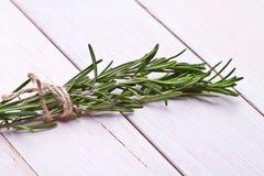 Fresh organic rosemary Stock Photo