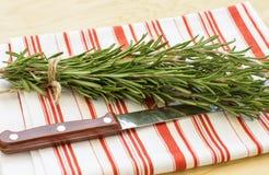 Fresh organic rosemary on table Royalty Free Stock Photo