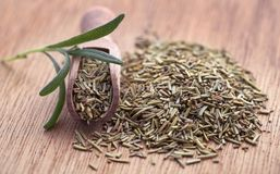 Fresh organic rosemary. On a wooden surface Royalty Free Stock Photo