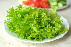 Fresh organic salad frisee and sliced vegetables on the white plates on the wooden table. Royalty Free Stock Photo