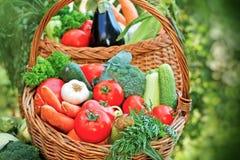 Fresh organic seasonal vegetable Stock Images
