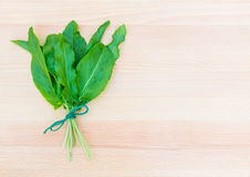 Fresh organic sorrel on cutting board Royalty Free Stock Photos