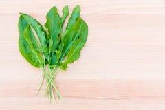 Fresh organic sorrel on cutting board. Fresh organic sorrel (shavel) on cutting board with copy space Royalty Free Stock Photos