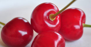 Fresh organic sour cherry Royalty Free Stock Images