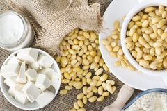 Fresh organic soy products:soy milk, soy yogurt, soy chese tofu. Healthy organic soy products: soy milk, soy yogurt, soy chese tofu and soy beans Stock Image